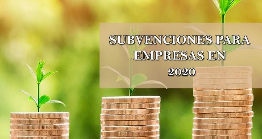 subvenciones para empresas en 2020